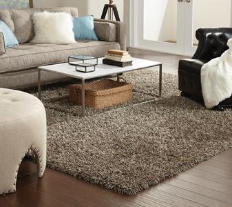 Area rug roomscene